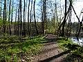 Bridge at path in the Teufelsbruch swamp.jpg