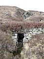 Bridge on the Boreraig Track - geograph.org.uk - 164043.jpg