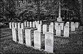 British Solder's cemetery in Jelgava 1916-1919 (Nikolaja cemetery) - panoramio.jpg