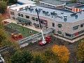 Broadwater Farm Primary School (The Willow), redevelopment 153 - October 2011.jpg