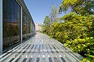 Brooklyn Botanic Garden New York May 2015 003.jpg