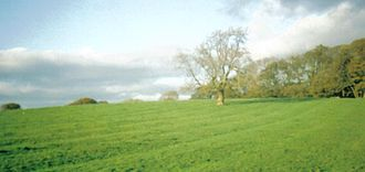 Economy of Scotland in the Middle Ages - Rig and furrow marks at Buchans Field, Wester Kittochside.