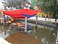 Budanilakantha Narayan Statue in water GP (4).JPG