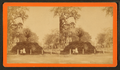 Bull Street, Savannah, Ga, from Robert N. Dennis collection of stereoscopic views 5.png