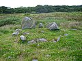 Burial Cairn - geograph.org.uk - 503781.jpg