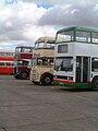 Bus lineup, Showbus 2002 (2).jpg