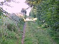 Byway near Down Barn, Homington - geograph.org.uk - 519643.jpg