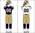 CFL Jersey WPG 2005.png