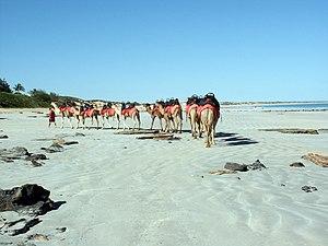 Cable Beach, Broome, Western Australia.