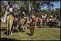 Caboolture Medieval Festival-30 (14486463648).jpg