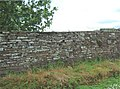 Caithness dry stone wall - geograph.org.uk - 479416.jpg
