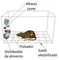 Caja de Skinner.jpg