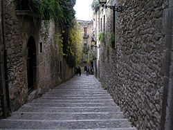 Call-Girona.JPG