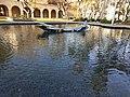Caltech Pond.jpg