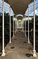Camellia House, Wollaton Hall, Nottingham (16).jpg