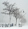 Canarsie, Brooklyn, NY, USA - panoramio (5).jpg