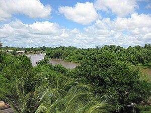 Canje River