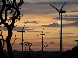 Wind farm - The Australian Canunda Wind Farm, South Australia at sunrise