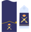 Captain general of the Air Force 5a.png