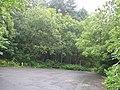 Car park, Polmont Wood - geograph.org.uk - 901649.jpg