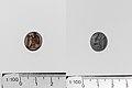 Carnelian ring stone MET DP141711 DP141712.jpg