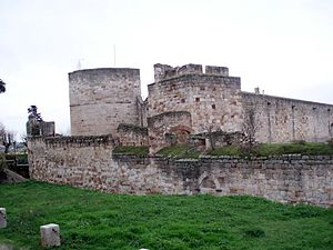 War of the Castilian Succession - Castle of Zamora