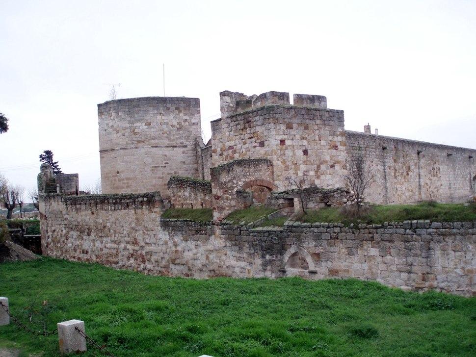 Castillodezamora
