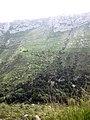 Cavagrande del Cassibile, Sicily - panoramio.jpg