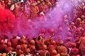 Celebration of Holi 4 (25384488433).jpg