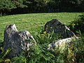 Cerrig-y-gof, southeastern chamber - geograph.org.uk - 1477361.jpg