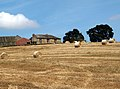 Champany Hill Farm - geograph.org.uk - 520179.jpg