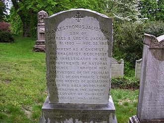 Charles Thomas Jackson - Charles Jackson's grave at Mount Auburn Cemetery