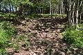 Cheddar gorge footpath detail.jpg
