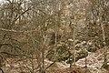 Cheile Vârghișului - Varghis Gorges - panoramio (26).jpg