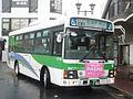 Chiba green bus CG-146.jpg