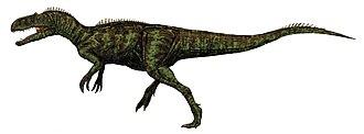 Megaraptora - Image: Chilantaisaurus