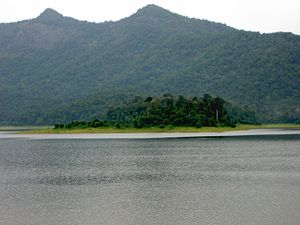 Chimmony Wildlife Sanctuary - A view from Chimmony Dam