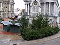 Christmas trees in Chamberlain Square (4117618621).jpg