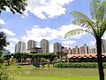 Cidade de Curitiba - Brazil by Augusto Janiski Junior - Flickr - AUGUSTO JANISKI JUNIOR.jpg