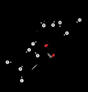 1989 Portuguese Grand Prix Formula One motor race held in 1989