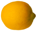 Citrus limon extracted 1.png