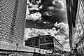 City center view.jpg