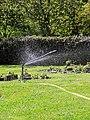 City of London Cemetery Memorial Garden sprinkler 5.jpg