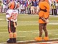 Cleveland Browns vs. Buffalo Bills (20156734233).jpg
