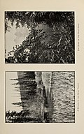 Climbs and exploration in the Canadian Rockies (1903) (14771710974).jpg