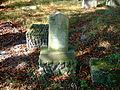 Cmentarz żydowski w Dobrodzieniu36.JPG