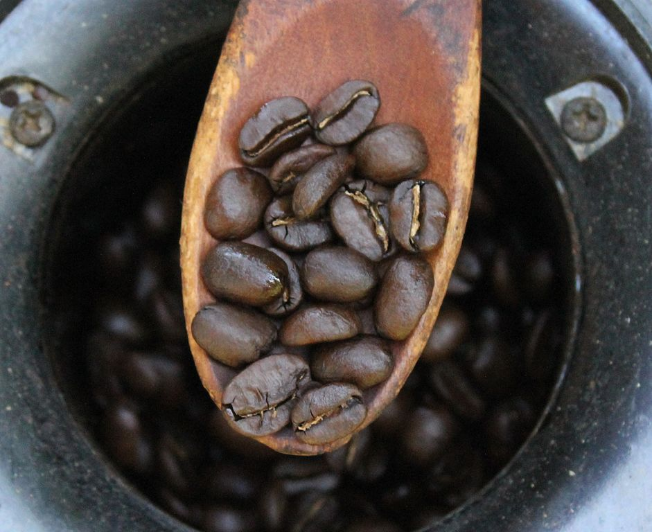 Filecoffee Roast Levels 5 The Home Roaster Color Chartg