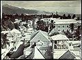 Collectie Nationaal Museum van Wereldculturen TM-60062283 Opname vanaf een hoog standpunt van Harbour street, Kingston Jamaica J. Valentine & Sons (Fotostudio).jpg