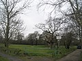 Common land at Stockheath - geograph.org.uk - 702034.jpg