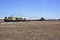 Continental Rail (36381258955).jpg